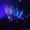 Лазерное шоу на свадьбу #915233