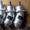 310.12.03 гидронасос шлицевой